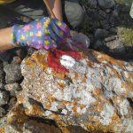 Markiranje novih staza na području Parka prirode Lastovsko otočje