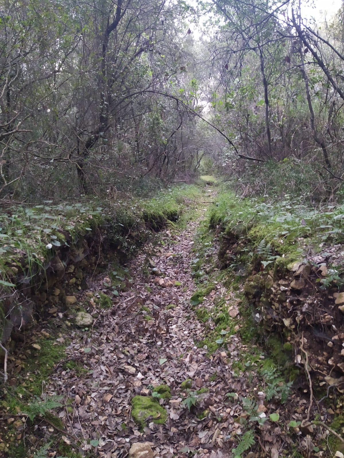 Potpisani ugovori o poslovnoj suradnji s lokalnim OPG-ovima za održavanje šumskih staza uz pomoć stočarstva